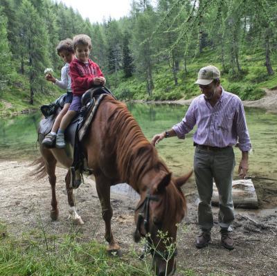 Avvicinamento ai cavalli