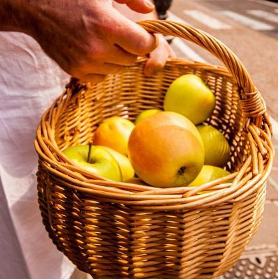 Le mele della Valsugana
